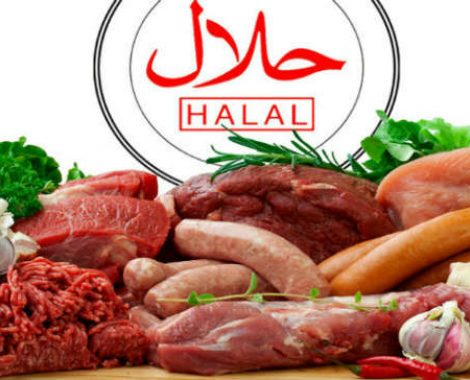 new halal-all meat